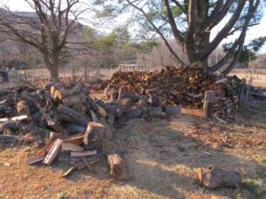 Cutting Trees Making Firewood Heat Amp Room For Solar
